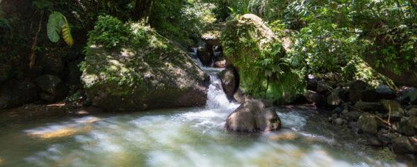 Chute d'eau en Martinique