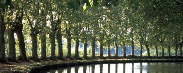 Vacances dans le Canal du Midi
